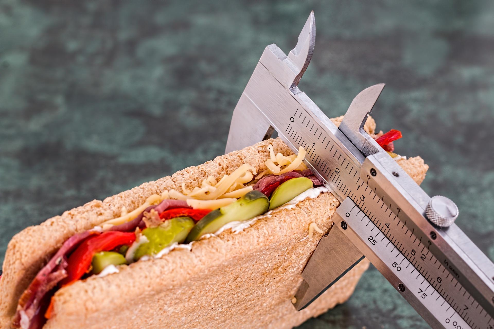 calorie alimenti