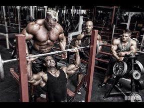 bodybuilding glutamina