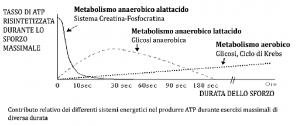 metabolismi energetici
