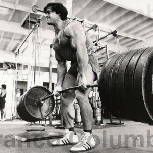 allenamento perdere grasso