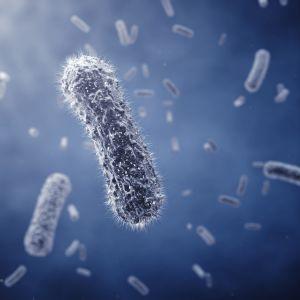 microbioma e cancro