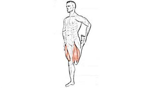 stretching quadricipiti