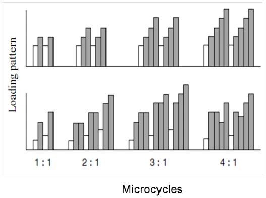 microciclo periodizzazione