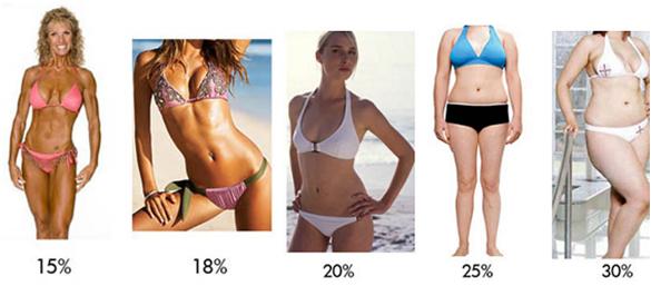grasso donne