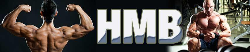hmb bodybuilding